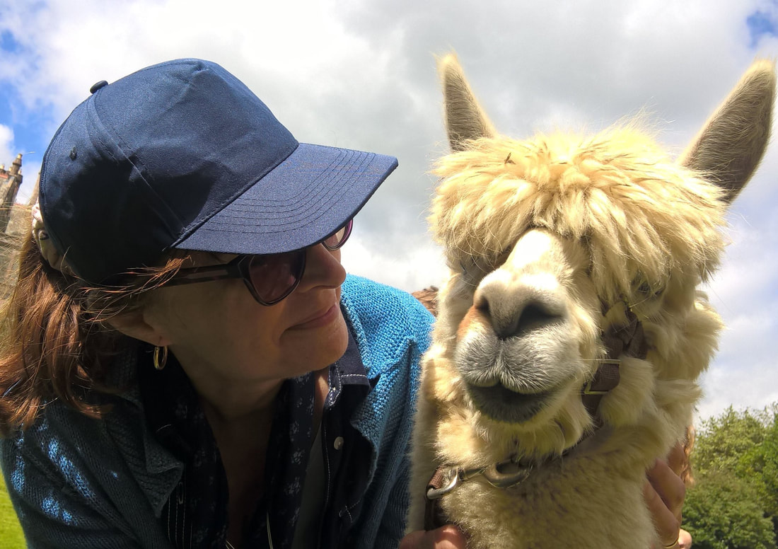 Miss Windsor: My culinary collaborator - Mrs Simkins enjoys a jolly old 'chin way' with Mr Alpaca!